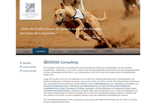 Lucroso Consulting: Konzeption & Gestaltung // responsive Webdesign CSS3 + HTML5 // Typo3 // RSS-Feed